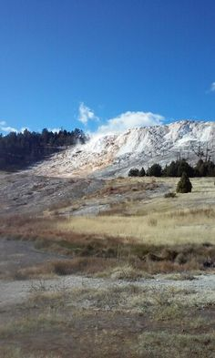 Yellowstone Park.
