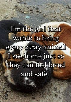 the girl that wants to bring every stray animal I see home just so they can feel loved and safe.I'm the girl that wants to bring every stray animal I see home just so they can feel loved and safe. Animals And Pets, Baby Animals, Funny Animals, Cute Animals, Love For Animals Quotes, I Love Dogs, Puppy Love, Cute Dogs, Diy Pet