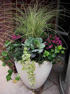 Cool Beautiful 25+ Container Gardening Ideas: Thrillers, Fillers and Spillers https://freshouz.com/beautiful-25-container-gardening-ideas-thrillers-fillers-and-spillers/ #home #decor #Farmhouse #Rustic