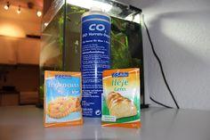 aquarium einrichten anleitung teaser aquarium fishtank pinterest aquarium einrichten. Black Bedroom Furniture Sets. Home Design Ideas