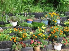 Great walls of tires - tires can be used to create retaining walls to stabilize an earth bank. Flowers in the tire wall gives it more eye appeal.