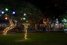 Parque de la 93. / 93 Street Park.  Fotografo: Uber Schalke.