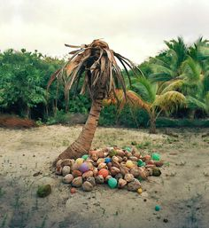 from Alejandro Duran's Washed Up series