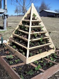 1000 Images About Plant Pyramid On Pinterest Strawberry Planters Terrarium And Planters