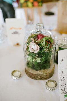 such a cute centerpiece with wood coin and cloche jar