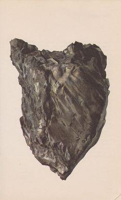 Vintage Print Rocks and Minerals, Graphite. $6.00, via Etsy.