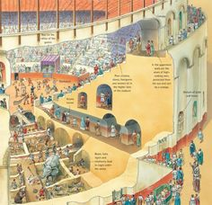 """Cutaway illustration of an amphitheatre, showing the underground cages for…"