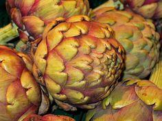 #artichoke #artichoke flower #artichoke plant #bless you #brown #close #cook #court #cultivation #delicious #dine #eat #edible #enjoy #exot #exotic #feed #food #frisch #garden #harvest #healthy #lunch #market #meal #medic