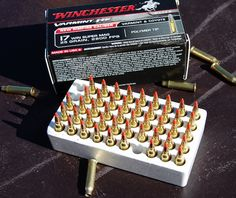 Winchester 17 Win Super Mag - Tiny bullets going really, really, really fast. Fun to shoot!