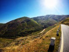 N304 em direcção a Ermelo Portugal, Country Roads, Beautiful Scenery, Jogging, Destinations