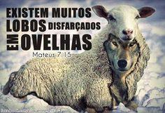 PENSAMENTOS REFORMADOS: Palavras do Reverendo: Joseano Laurentino. Deus ju...