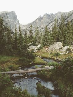Dream Lake Creek Art Print - love the print.  Would love to fish it!  It's in Rocky Mountain National Park, Colorado.