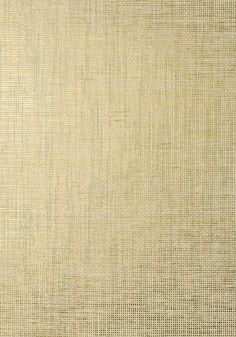 STABLEWOOD, Aqua on Metallic Gold, T41146, Collection Grasscloth Resource 3 from Thibaut