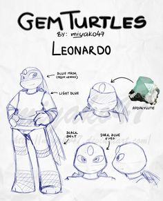 427 Best Leonardo Images On Pinterest Teenage Mutant Ninja Turtles