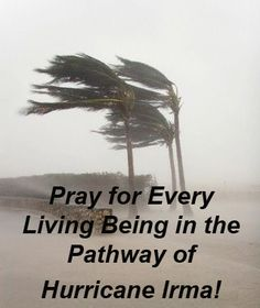 Hurricane Irma is a Category Five Hurricane and destined to start at Puerto Rico and continue on upwards to Florida. Please pray for everybody in its pathway to be protected and safe. God bless everyone, Cherokee Billie Spiritual Advisor