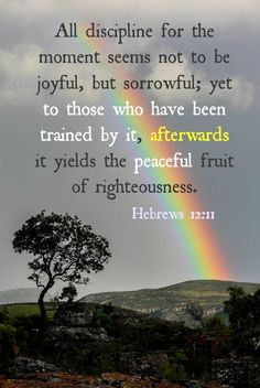 When we allow God to use our trials to train us, we'll experience the peaceful fruit of righteousness.