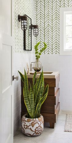 Small plants for bathrooms guest bath photography bathroom plants bathroom wall decor bathroom wallpaper small fake . Bathroom Plants, Bathroom Wall Decor, Small Bathroom, Bathroom Wallpaper, Bathrooms, Wallpaper Plants, Cozy Bathroom, Light Bathroom, Bathroom Signs