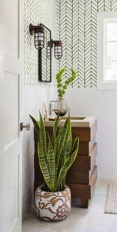 #Déco. 6 plantes à faire pousser dans une salle de bains.