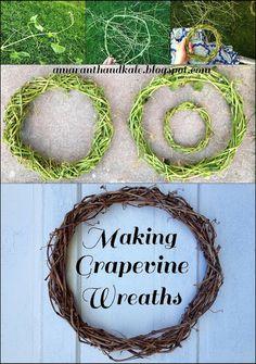 Amaranth & Kale: Making Grapevine Wreaths
