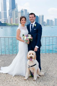 Bride and Groom with a dog in front of the Chicago skyline. R.E.M. Wedding. www.remvp.com