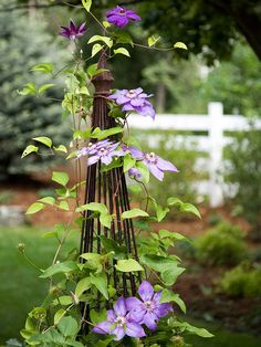 Construct a trellis, arbor, or statue, at the end of your property which adds an instant attention-getter, taking the focus away from a small yard's proportions.
