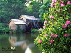 Mabry mill, Blue Ridge Parkway, Virginia - Lakes Wallpaper ID 1725716 - Desktop Nexus Nature Blue Ridge Parkway Virginia, Old Grist Mill, Water Mill, Floating House, Garden Cottage, Free Photography, Amazing Photography, Natural Scenery, Scenery Wallpaper