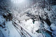 Vintgar szurdok - Belépő 2020, nyitvatartás, parkolás, térkép, Busan, Snow, Outdoor, Outdoors, Outdoor Games, The Great Outdoors, Eyes, Let It Snow