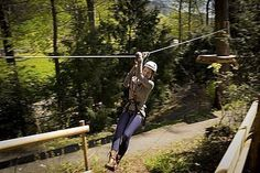 Flying Fox für Nervenkitzel | Swiss Holiday Park AG Holiday Park, Golf Bags, Fox, Outdoor, Road Trip Destinations, Switzerland, Adventure, Outdoors, Outdoor Living