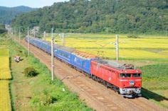 EF81 寝台特急「あけぼの」  Electric locomotive EF81 leaded sleeping car train 'Akebono' http://expressworld222.web.fc2.com/express/blue-train/akebono.htm