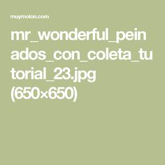 mr_wonderful_peinados_con_coleta_tutorial_23.jpg (650×650)