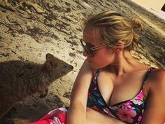 Hello little gorgeous Quokka! Visited Rottnest  today with thee most amazing people ever! I've had so much fun and laughter that my tummy hurt! #quokka #bikini #selfie #quokkaselfie #rottnest #rottnestisland #tan #adorable #cute #cuteness #australianlife #australia #agoodday #westernaustralia #Perth #perthwa #perthisok #perthlife #sun #sunshine #happiness #happymemories by daisydarlingdobby86 http://ift.tt/1L5GqLp