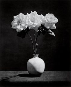 Robert Mapplethorpe | ROSE (1983) | Artsy