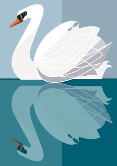 "Swan at the lakes - #Sivellink ""An Icon a Day"""