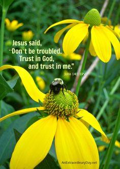 "#EncouragingWords :: ""Trust in God from John 14:1"