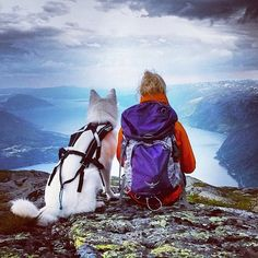 Woman's best friend: @linnto's  adventure buddy, Luna, seems to be just as entranced by the view of Hardanger fjord as Linn herself. Taken from Oksen (the Bull) Mountain on the west coast of Norway. :: Who's your best friend in adventure? Use #outdoorwomen to show us!