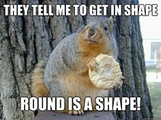American Fitness Squirrel