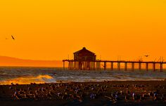 Amber Skies And Seagulls by MagArtist, via Flickr