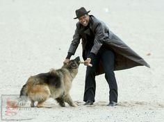 1000 images about german shepherd in film tv print