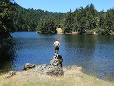 Hike in the Sierra without leaving the Bay Area! Well, at least it seems that way. The sparkling reservoirs on the north side of Mount Tamalpais offer miles of hiking trails and the kind of peaceful forest sensation that could be a stand-in for low elevation Sierra Nevada. Alpine Lake is the largest of the reservoirs and gives you some of the most beautiful and quiet scenery (it's no wonder…