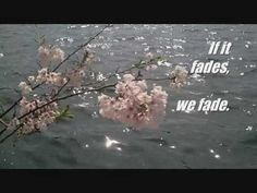 Springtime with verses by RUMI ♥   video by Jude Nagurney Camwell #rumi