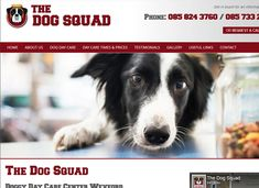 A new website for The Dog Squad - a purpose built dog day care centre in North Wexford, offering care, play and socialising for dogs of all ages. For more information on bookings or prices look on their website: Dog Days, Squad, Centre, Purpose, This Is Us, Play, Website, Dogs, Design