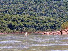 Remar por el río Yabotí en Misiones