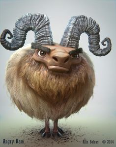Angry Ram | Alin Bolcas