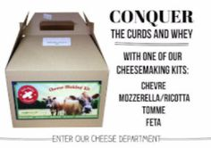 Small-Scale Dairy Equipment for Cows, Goats & Sheep Cheese Making Supplies, Mozzerella, Milk And Cheese, Artisan Cheese, Cute Cows, Bottle Feeding, Cheese Cloth, How To Make Cheese, Scale