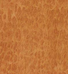 Eucalyptus Burl