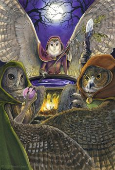 Maiden, Mother, Crone - Owl style