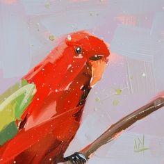 Red Parrot original bird oil painting by Angela Moulton prattcreekart  feeling tropical today