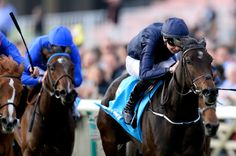 Joseph O' Brien Photos: Newmarket Races