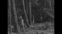 1944, South East Asia: rubber production rubber trees - Cette plan de haute qualité Rights Managed HD sur Plantation de caoutchouc, Ficus elastica, Fabrication du Caoutchouc, Industrie de la défense, Économie de guerre, Seconde Guerre Mondial, Travailleur, Travailler, Femme, Asie, Archive historique, Homme, Jour, Stock Footage,  est prêt pour l'octroi de licences et téléchargement.
