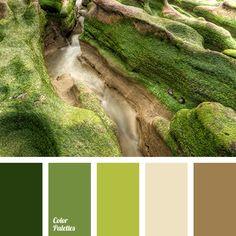 Color Palette #3450